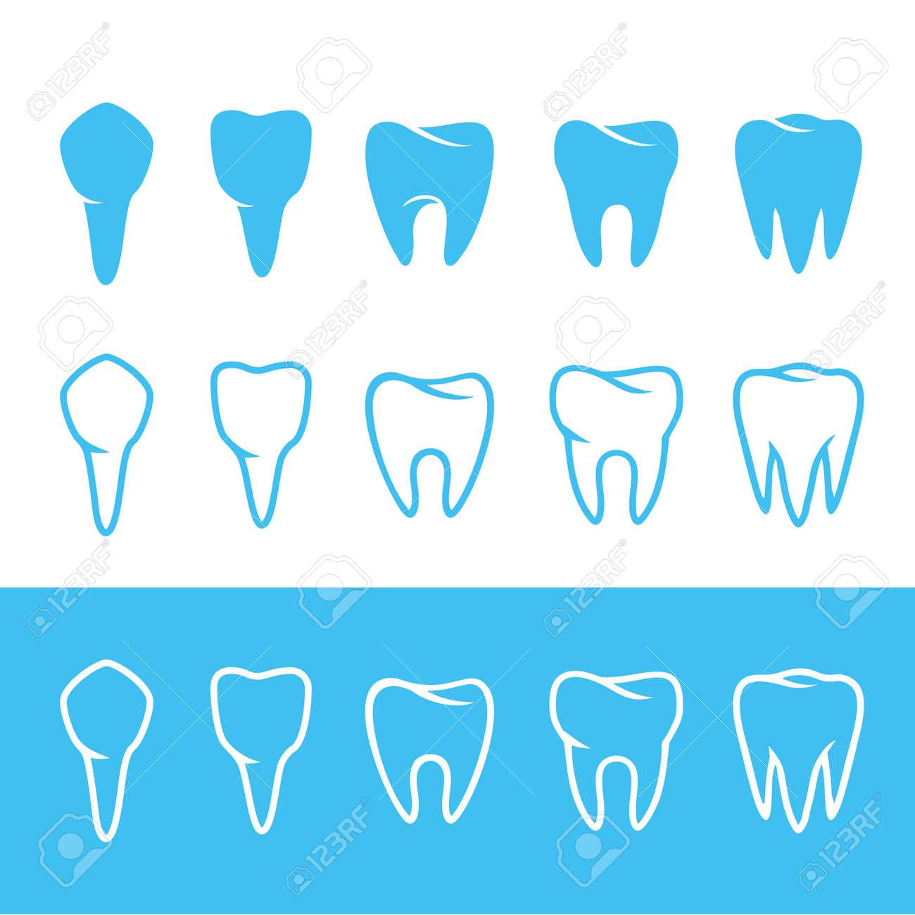 Human dentition teeth human tooth anatomy chart diagram teeth human dentition teeth human tooth anatomy chart diagram teeth illustration imagens 67563633 ccuart Gallery