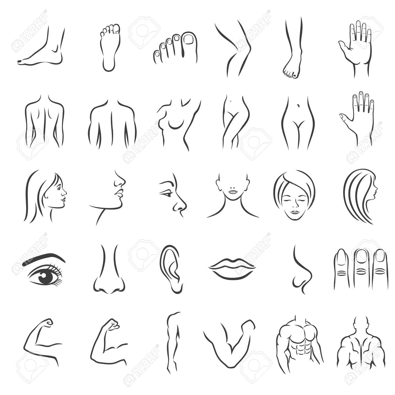 human body parts icons plastic face surgery medical vector royalty free cliparts vectors and stock illustration image 131423809 human body parts icons plastic face surgery medical vector