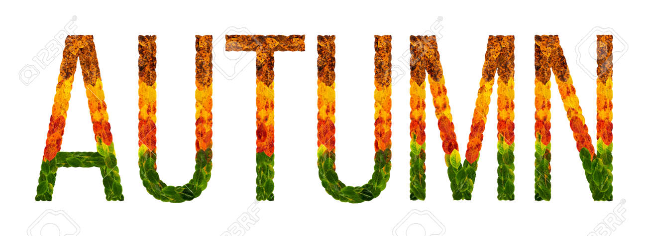 Autumn Word Is Written With Leaves White Isolated Background ...