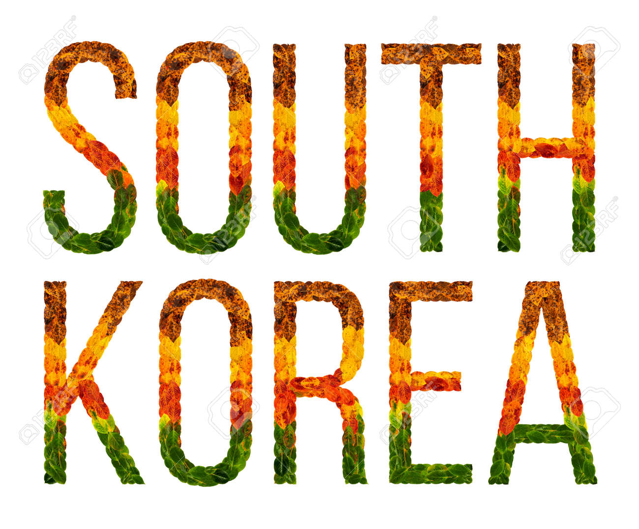South Korea Word Is Written With Leaves White Isolated Background Banner For Printing