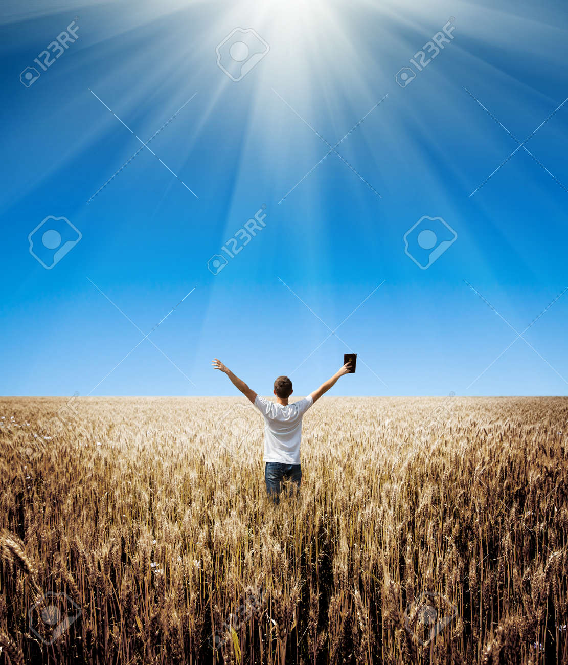 man holding up Bible in a wheat field - 41413327