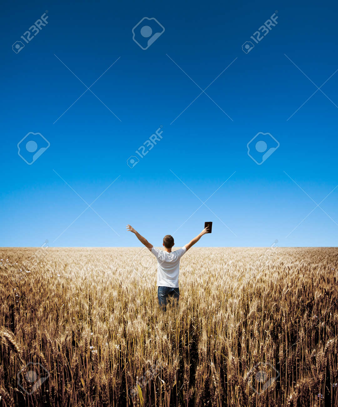 man holding up Bible in a wheat field - 41413747