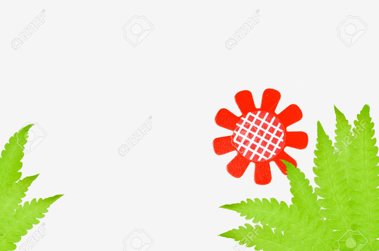 a flower  with  leaves  on white background Stock Photo - 14165629