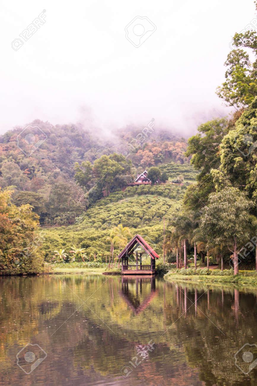 Kleines Schwimmendes Haus Am See Mit Weißem Nebel Bedecken Die ...