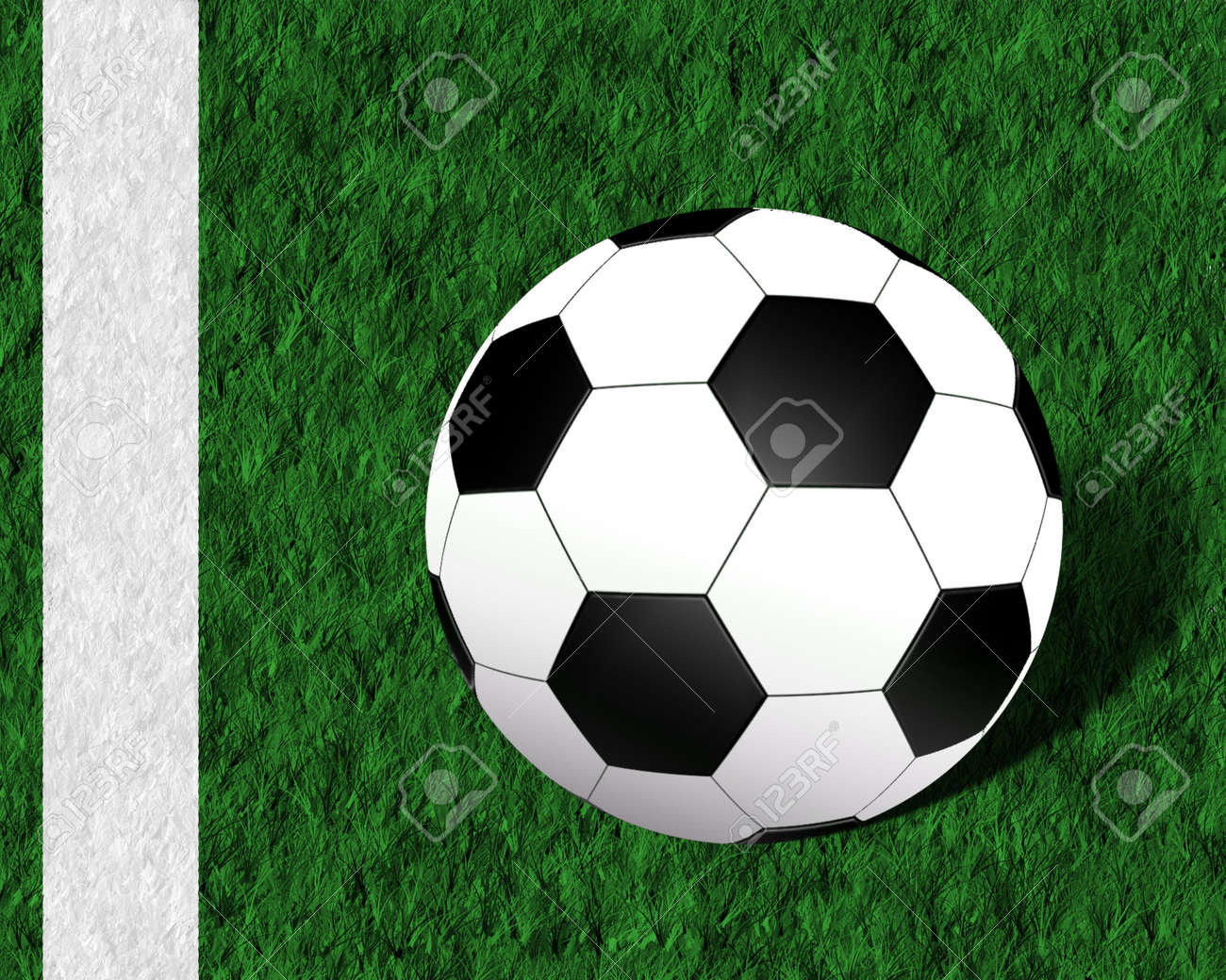 white and black football ball on the grass Stock Photo - 3069428