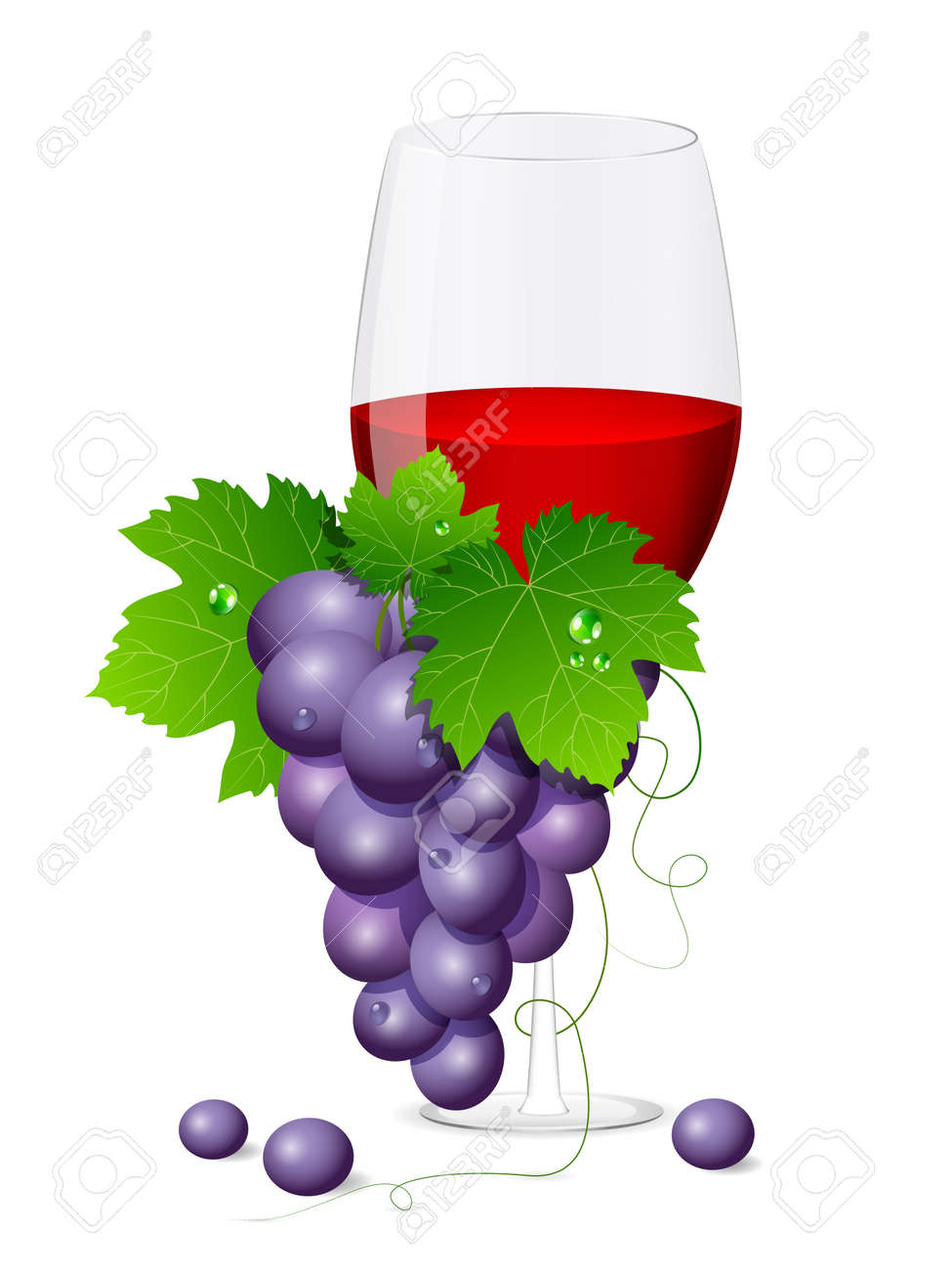 Vector wine glass with grapes Stock Vector - 10847459