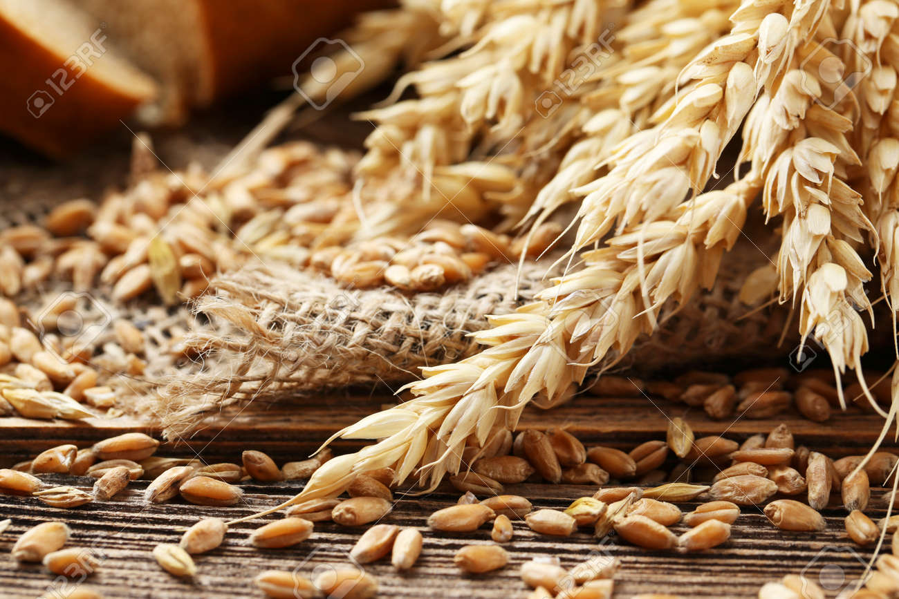 Ears of wheat and wheat grains on brown wooden background - 41910522