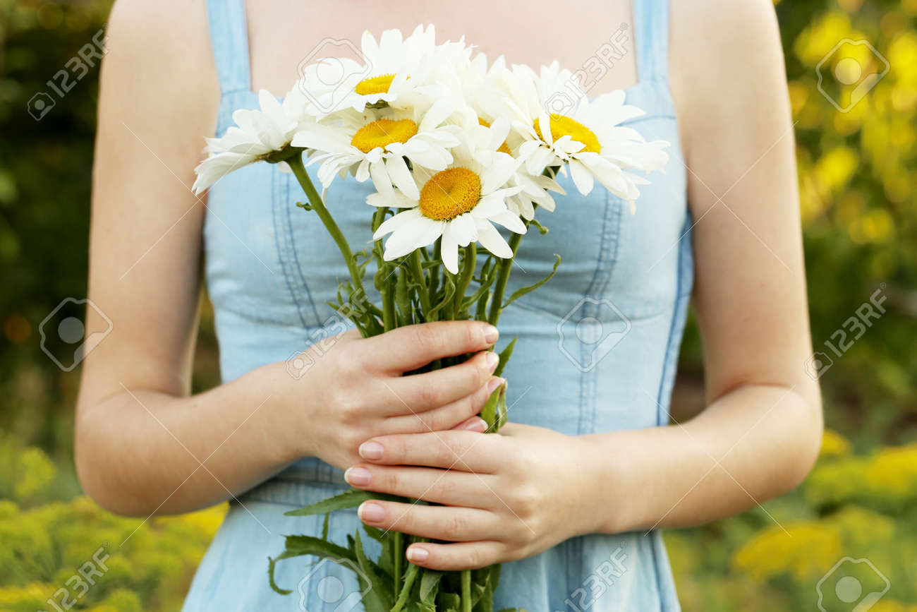 Woman holding bouquet of chamomile flowers, ourdoor - 42195031