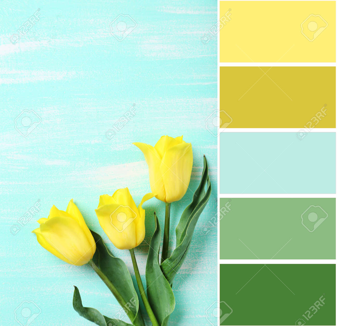 Color Palette With Bouquet Of Yellow Tulips On A Mint Wooden Stock