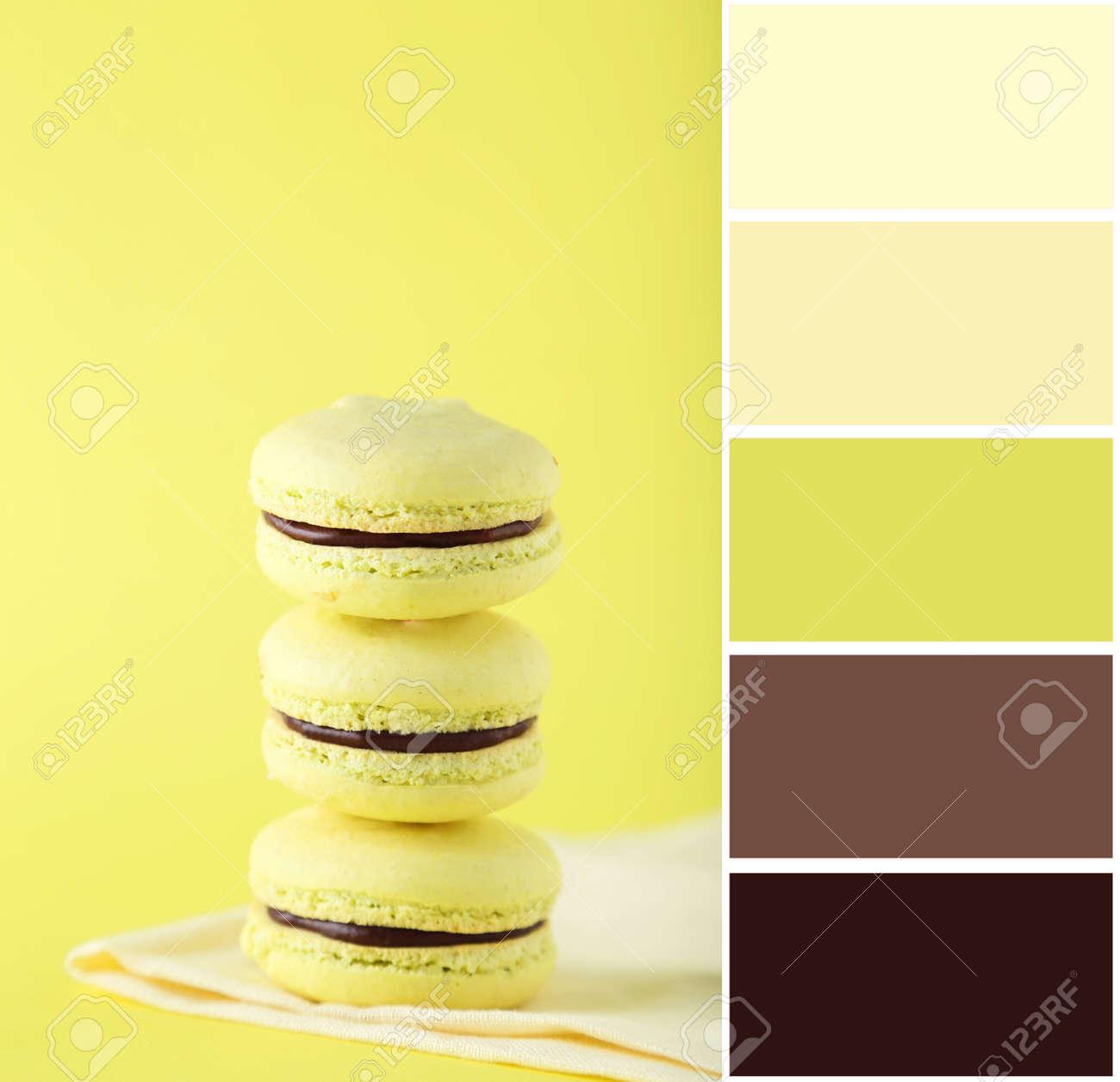 Palette De Couleurs Aux Macarons Français Sur Fond Jaune Banque D