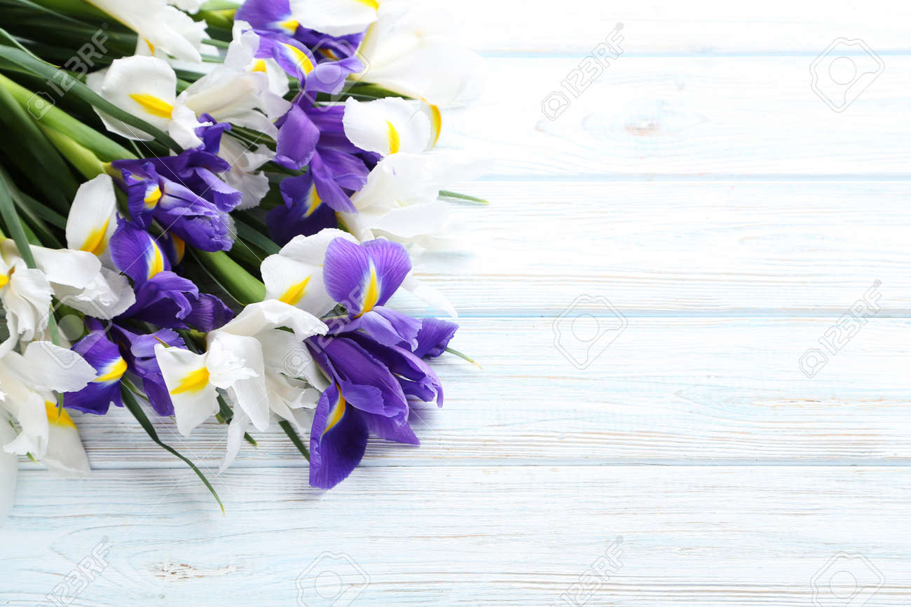 Bouquet of iris flowers on white wooden table stock photo picture bouquet of iris flowers on white wooden table stock photo 74231846 izmirmasajfo Image collections