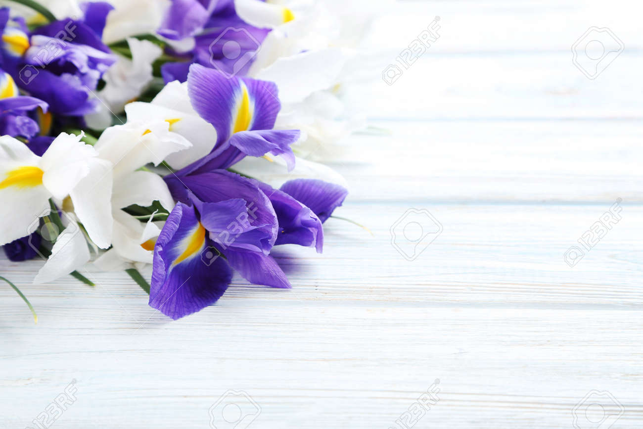 Bouquet of iris flowers on white wooden table stock photo picture bouquet of iris flowers on white wooden table stock photo 75334341 izmirmasajfo
