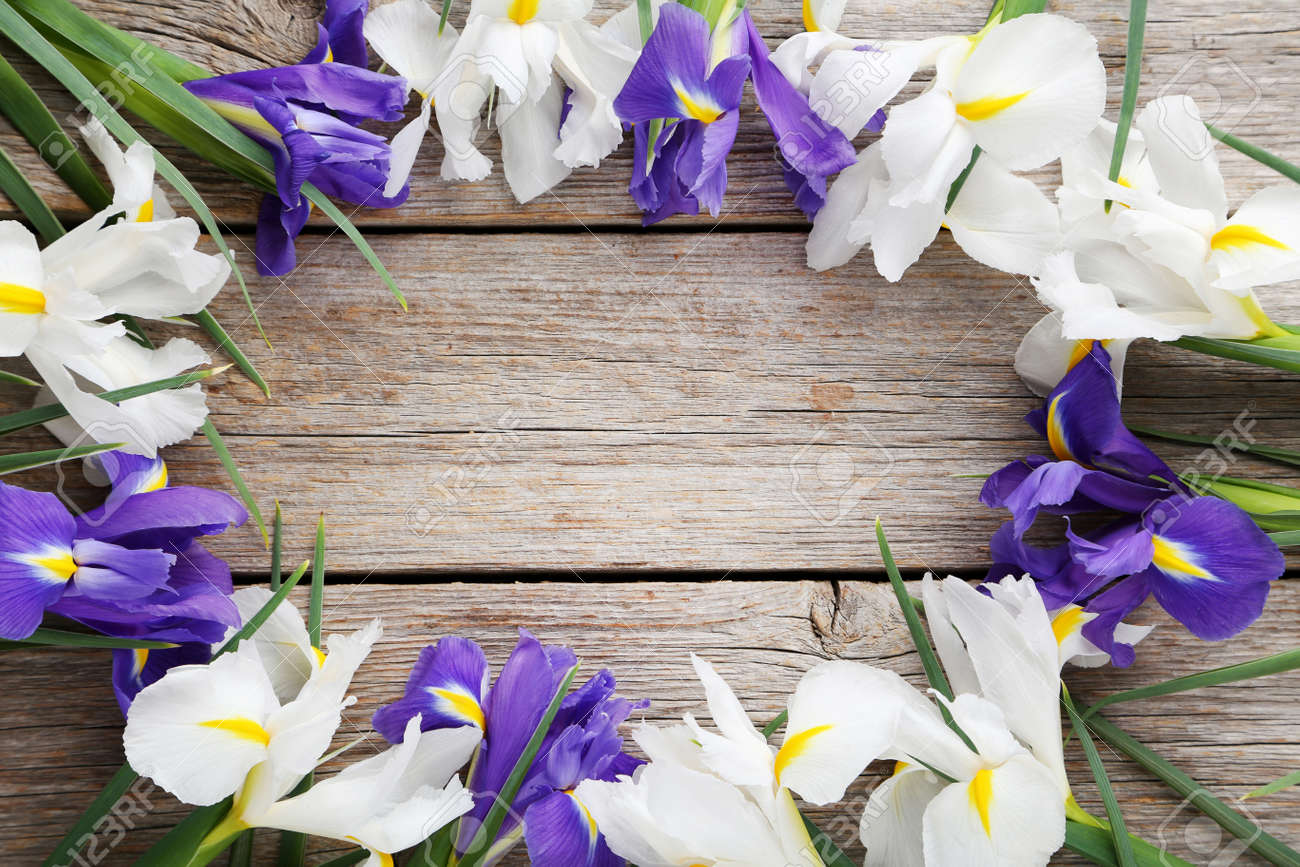 Bouquet of iris flowers on grey wooden table stock photo picture bouquet of iris flowers on grey wooden table stock photo 78002595 izmirmasajfo