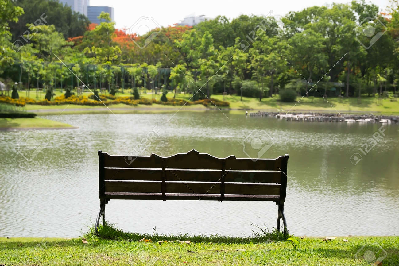 Bench In The Central Park With Peaceful Lake On Sunny Day Stock