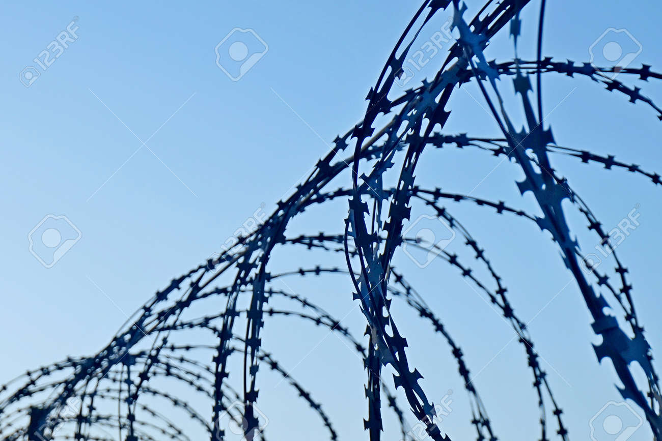 Barbed Wire Fence With Sharp Spikes Against The Blue Sky Stock Photo ...