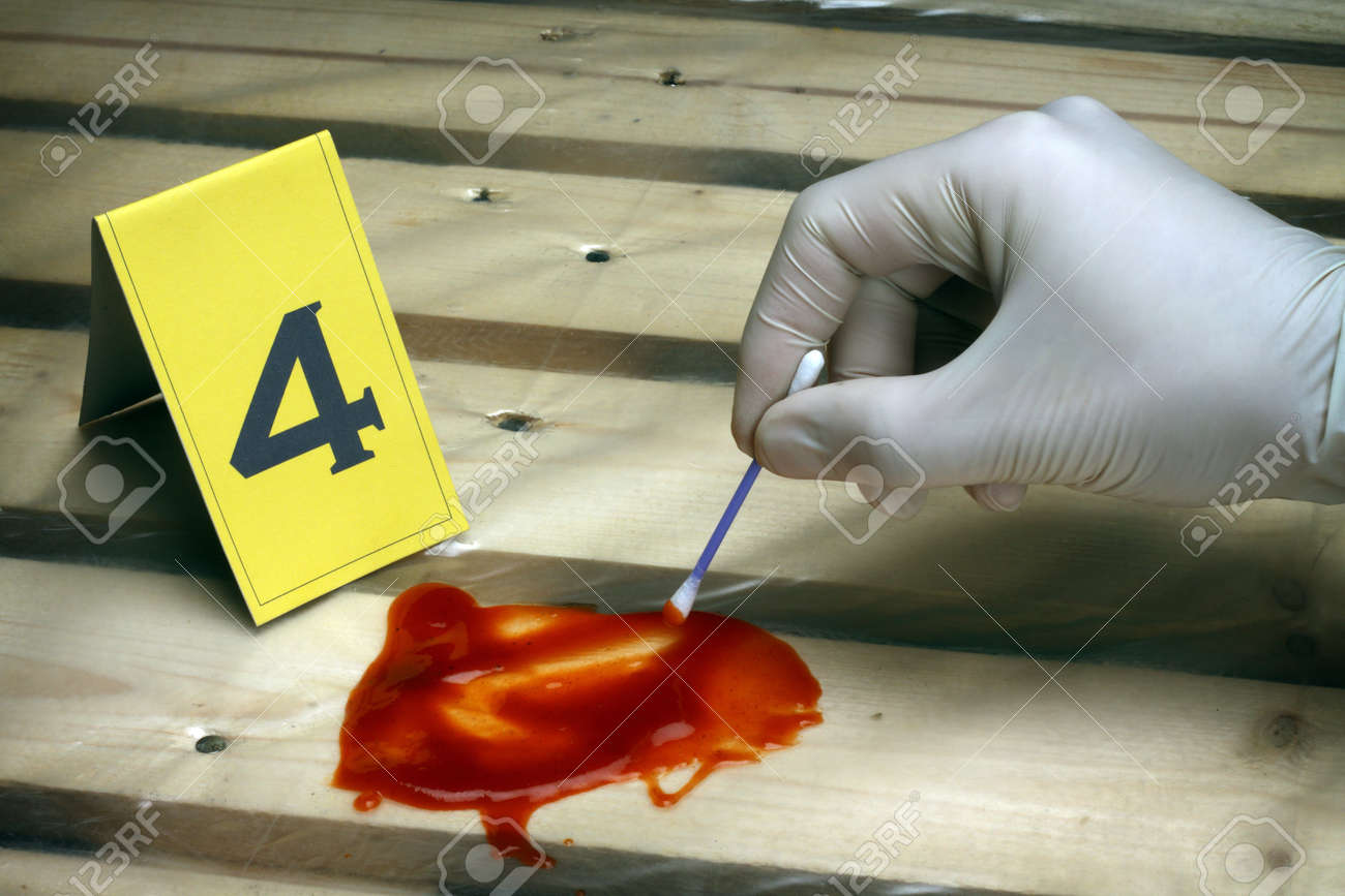 crime scene investigation collect evidence investigator takes a sample stock photo
