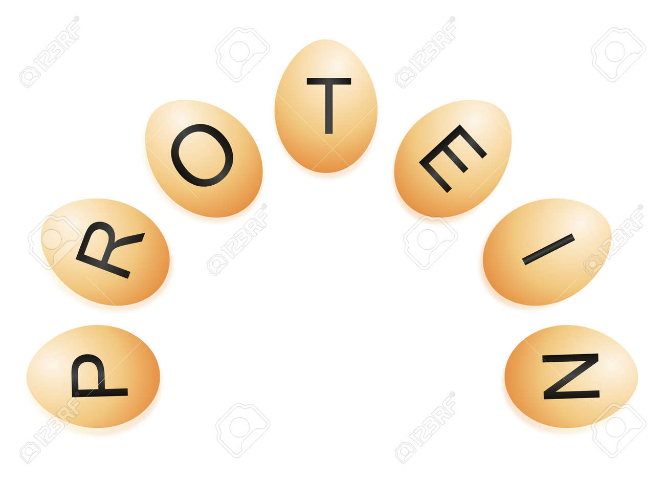 illustration illustration depicting a semi circle of chicken eggs with letters spelling the word protein arranged over white and reflecting into the