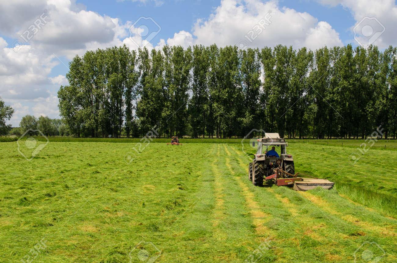 Haymaking tracktors in Flanders field in spring Stock Photo - 20235712