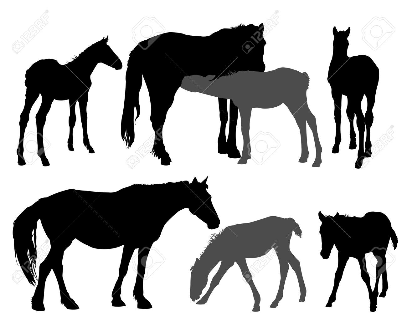 Horses silhouettes Stock Vector - 6192141