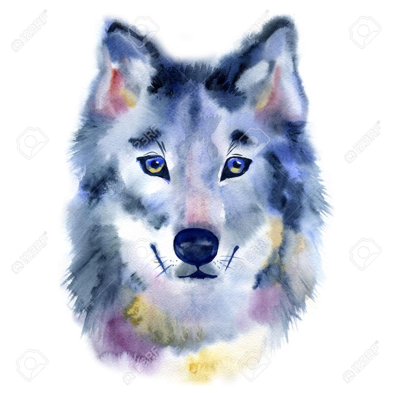 水彩のオオカミの頭正面から見た図手描きのイラスト