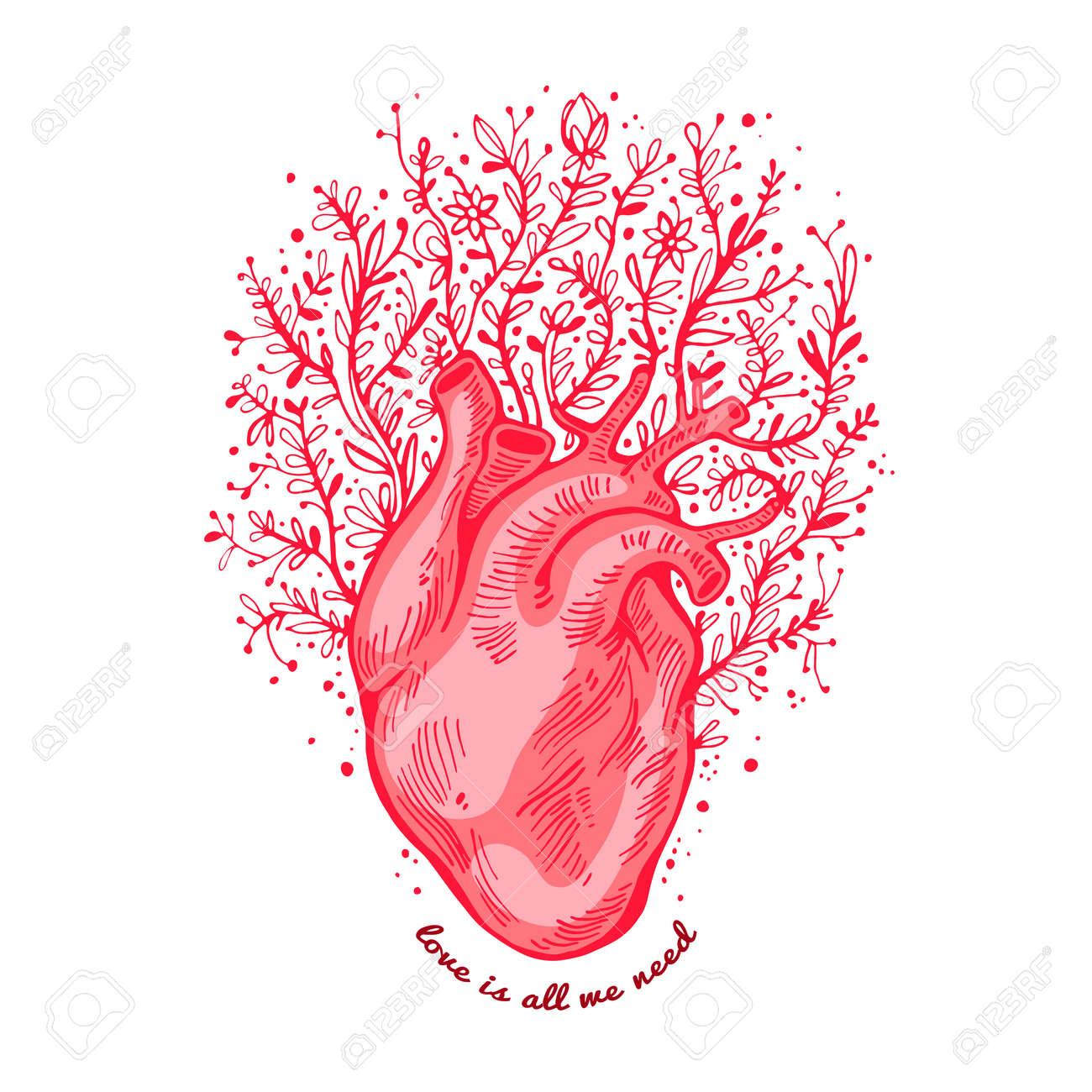 Corazón Anatómico Con Flores. El Amor De Tagline Es Todo Lo Que ...