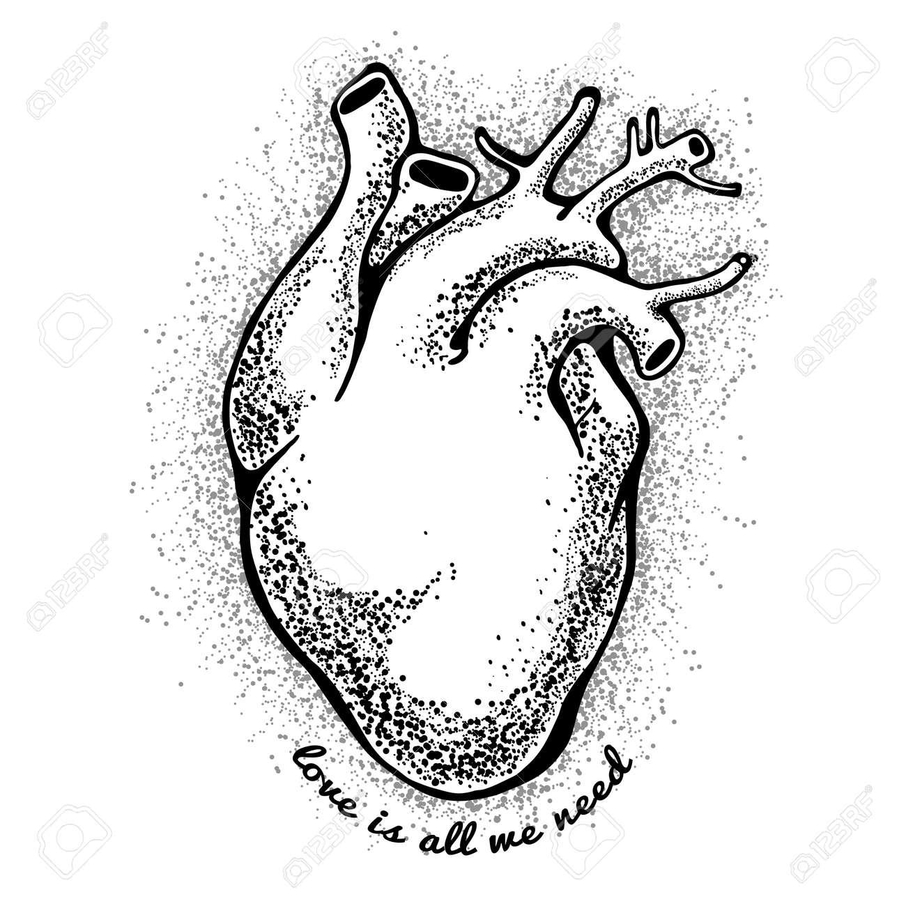 Corazón Anatómico Negro. El Amor De Tagline Es Todo Lo Que ...