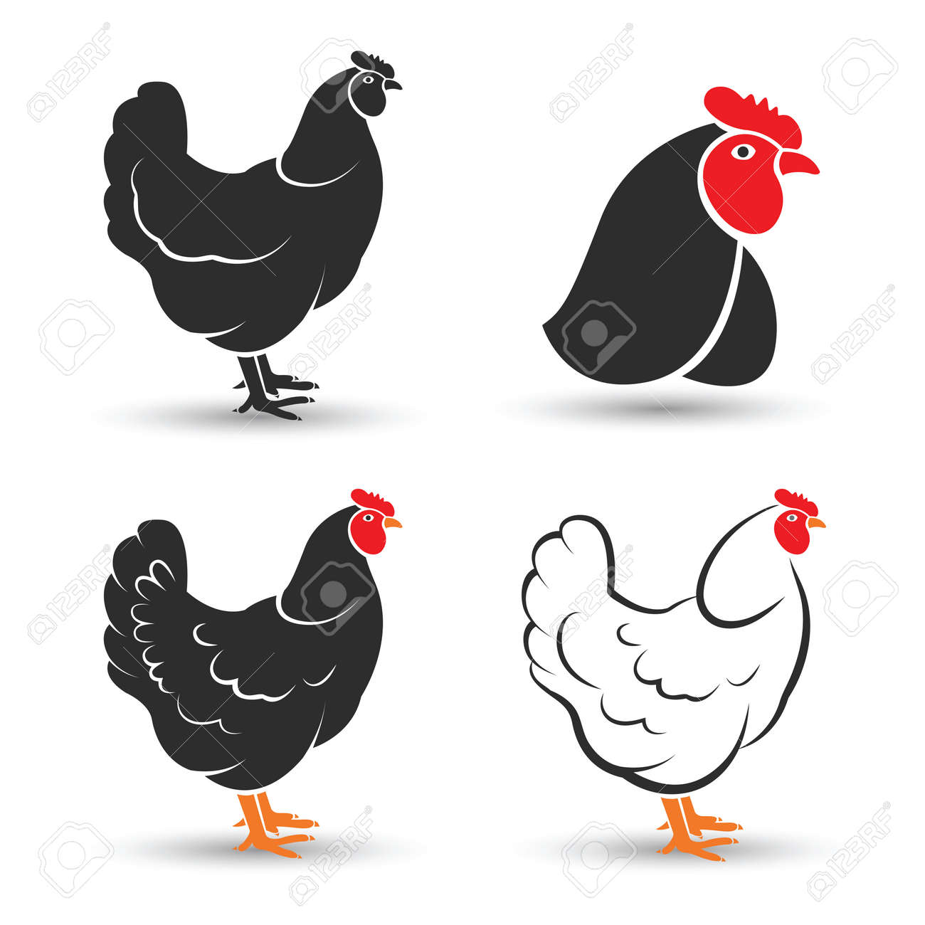 Chicken and cock hand drawn sketch on white background , vector illustration Stock Vector - 41615452