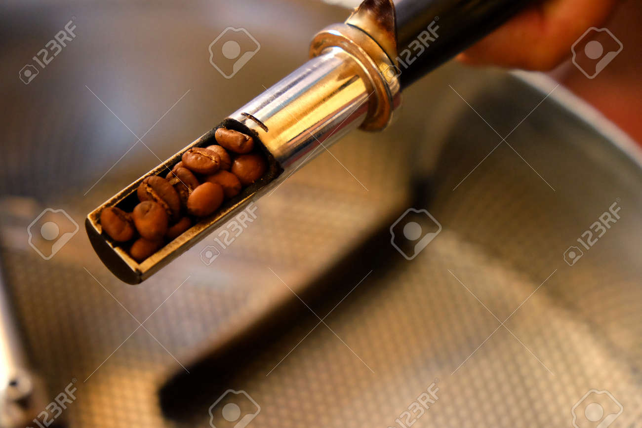 hand holding sampling of coffee beans during roasting process Stock Photo - 42819146