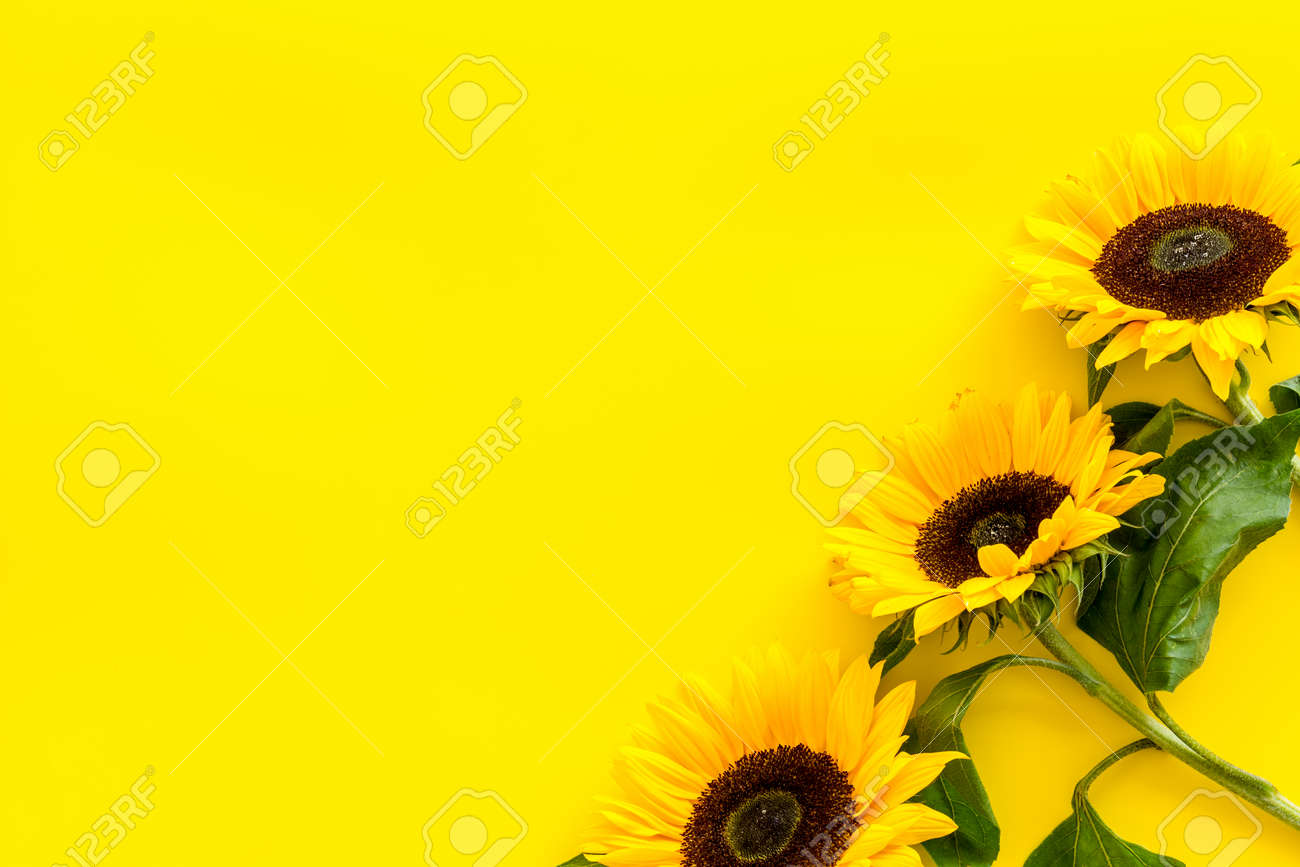 Field Flowers Design With Sunflowers Frame On Yellow Background Stock Photo Picture And Royalty Free Image Image 129220442