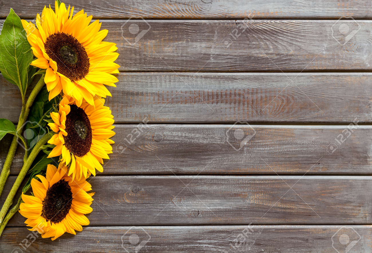 Bouquet Of Sunflowers On Dark Wooden Background Top Down Copy Stock Photo Picture And Royalty Free Image Image 138468691