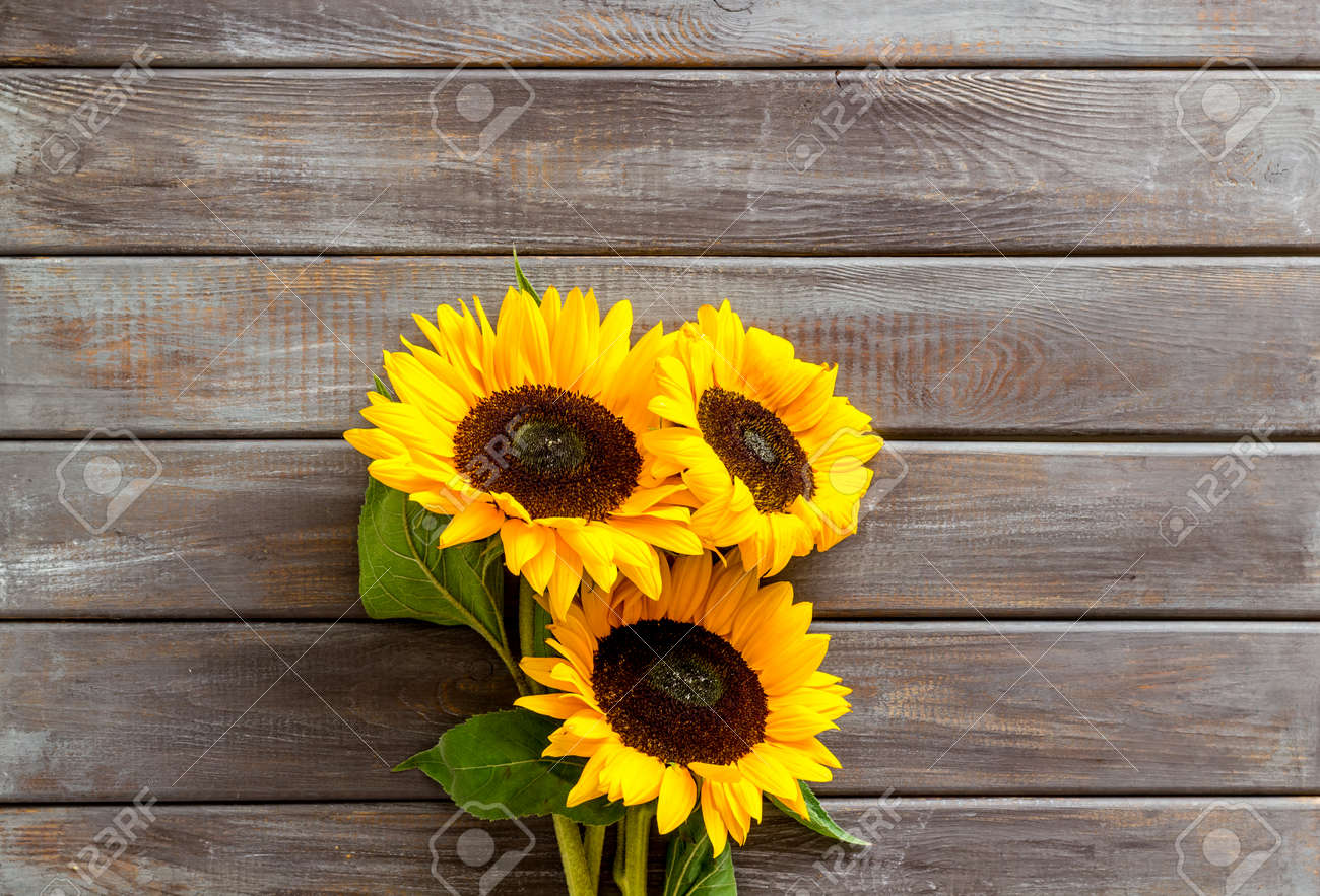 Bouquet Of Sunflowers On Dark Wooden Background Top Down Stock Photo Picture And Royalty Free Image Image 139027978