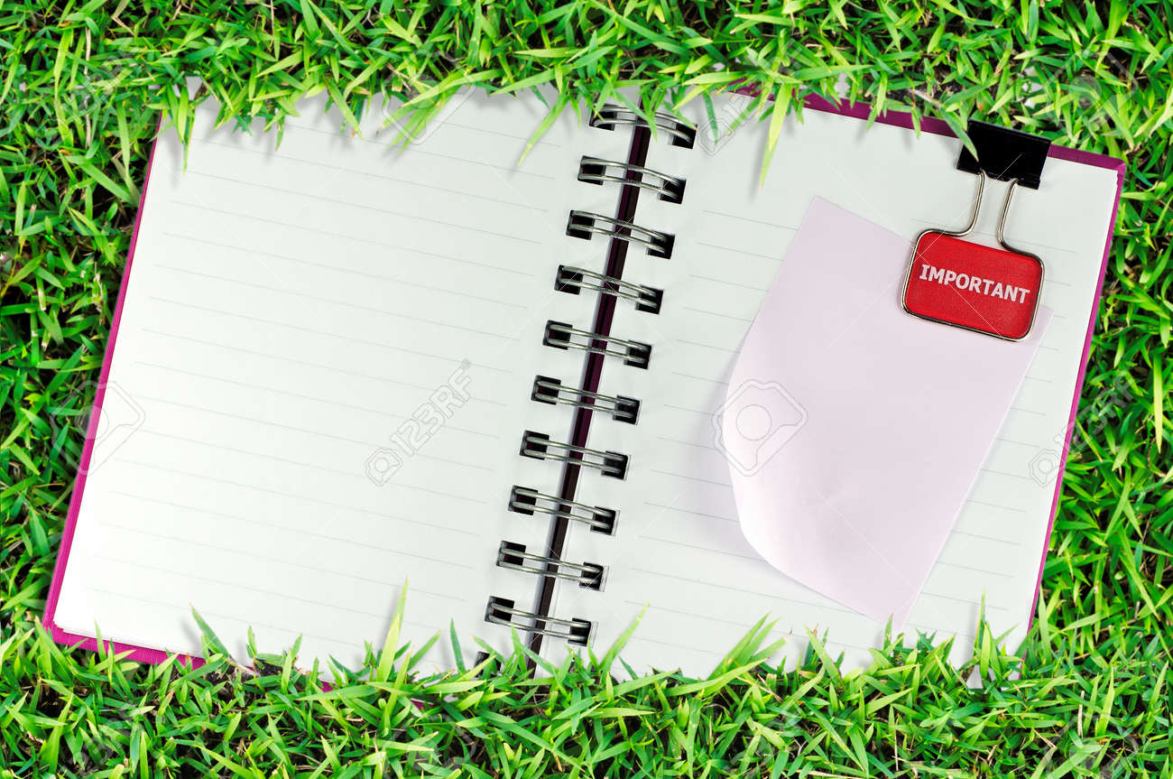 blank page of note book on grass and white isolate Stock Photo - 8284763