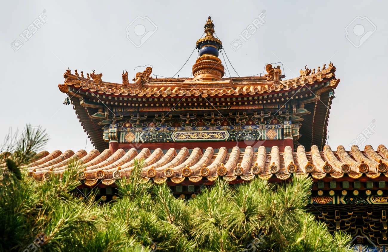 traditional chinese architectural roof with animals immortal