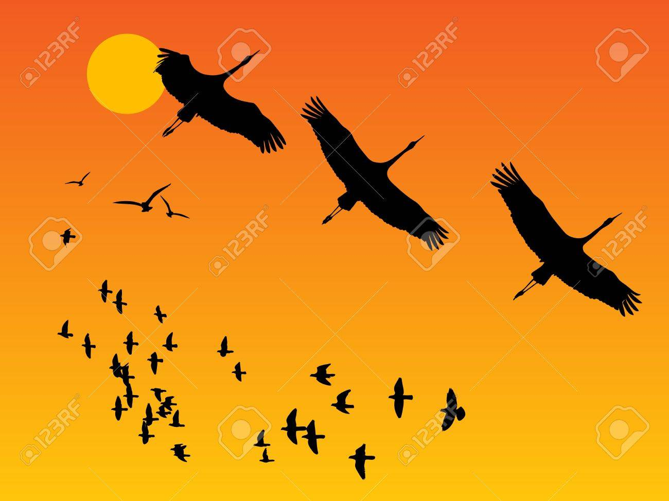 Group of birds on sunset Stock Vector - 14169906