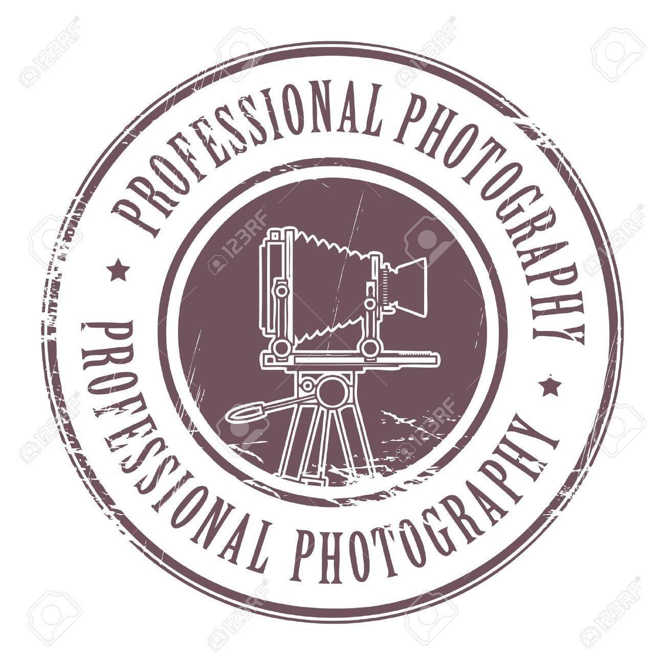 Grunge rubber stamp with the text professional photography written inside the stamp Stock Vector - 14600136