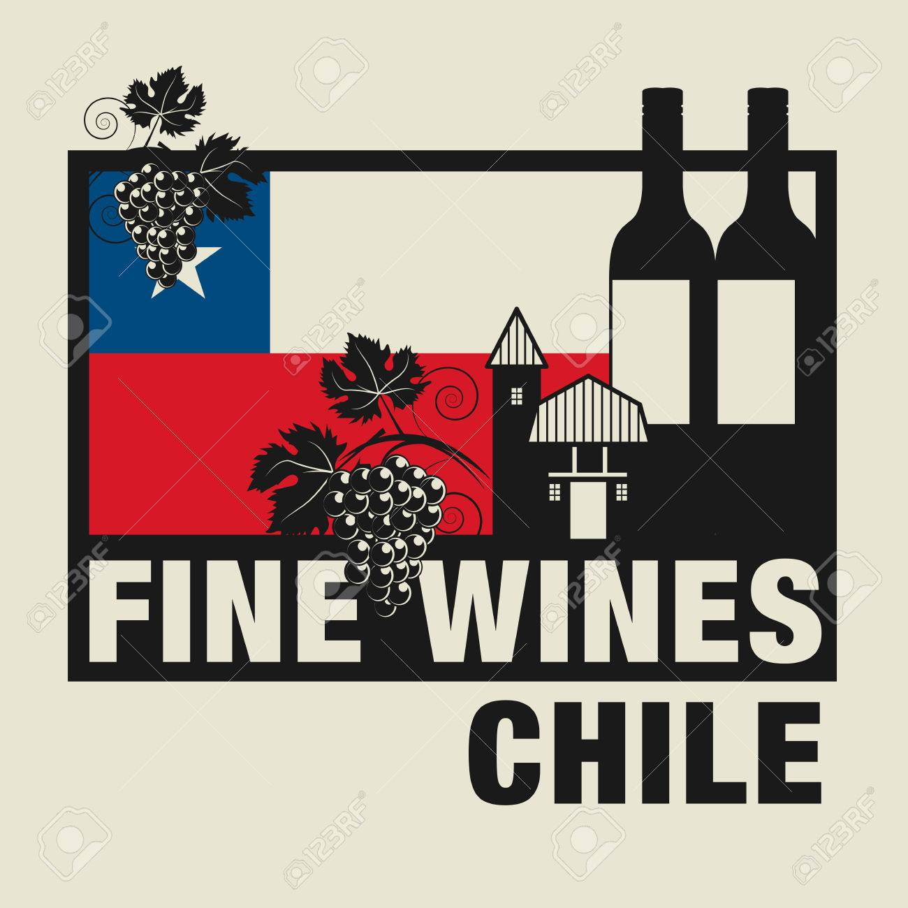 Image result for fine wines from chile