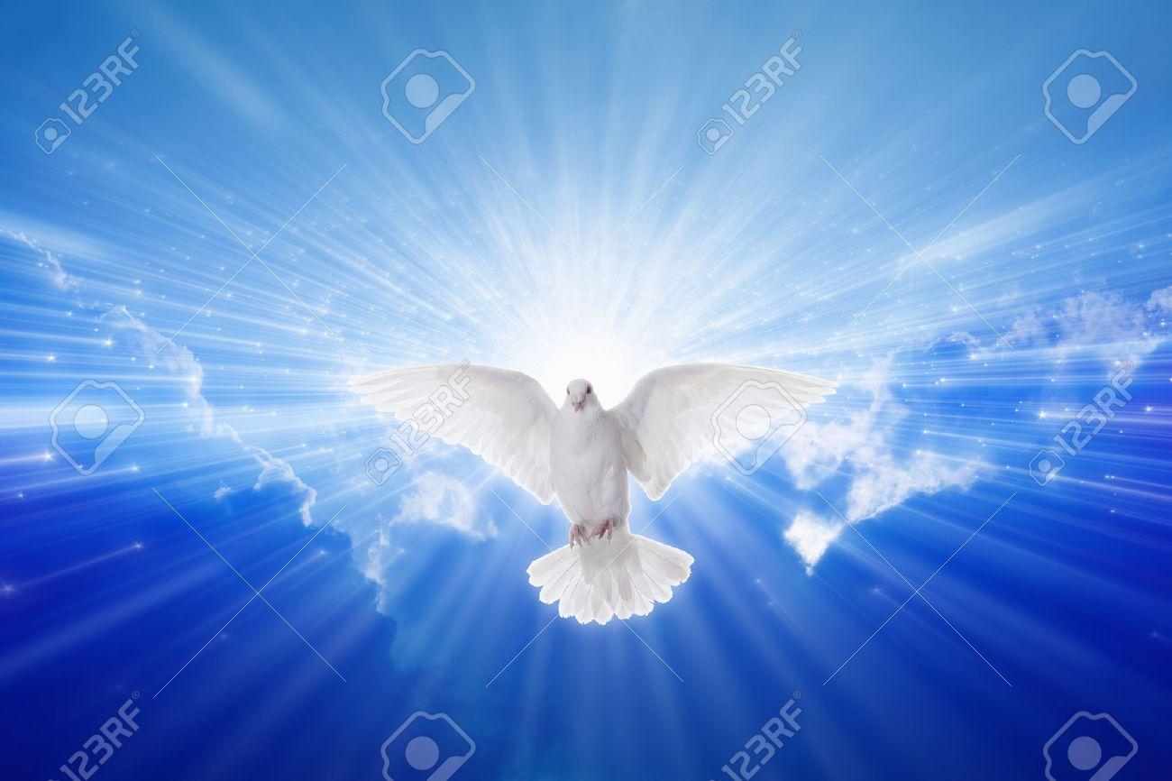 Holy Spirit came down like dove, holy spirit dove flies in blue sky, bright light shines from heaven, christian symbol, gospel story - 38719997