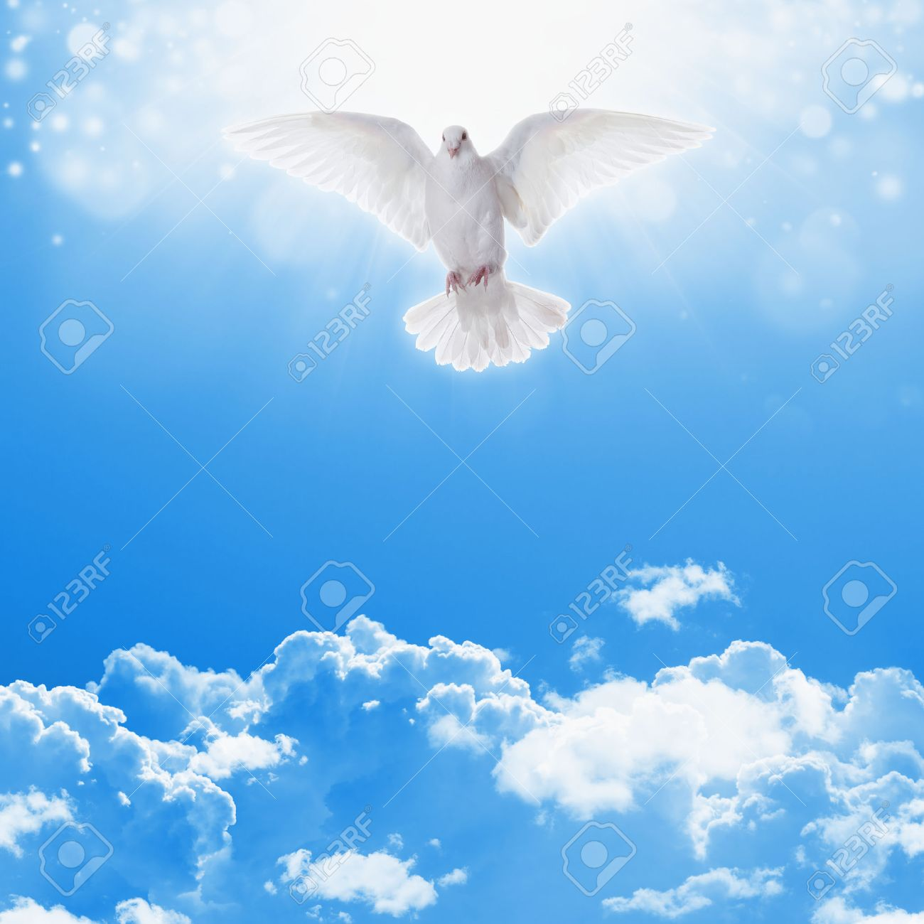 Holy spirit dove flies in blue sky bright light shines from holy spirit dove flies in blue sky bright light shines from heaven christian symbol biocorpaavc