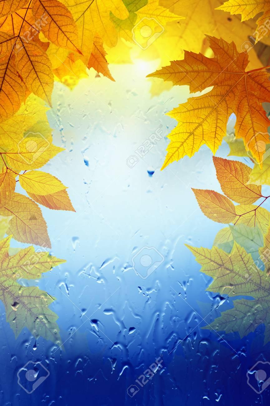 seasonal autumn