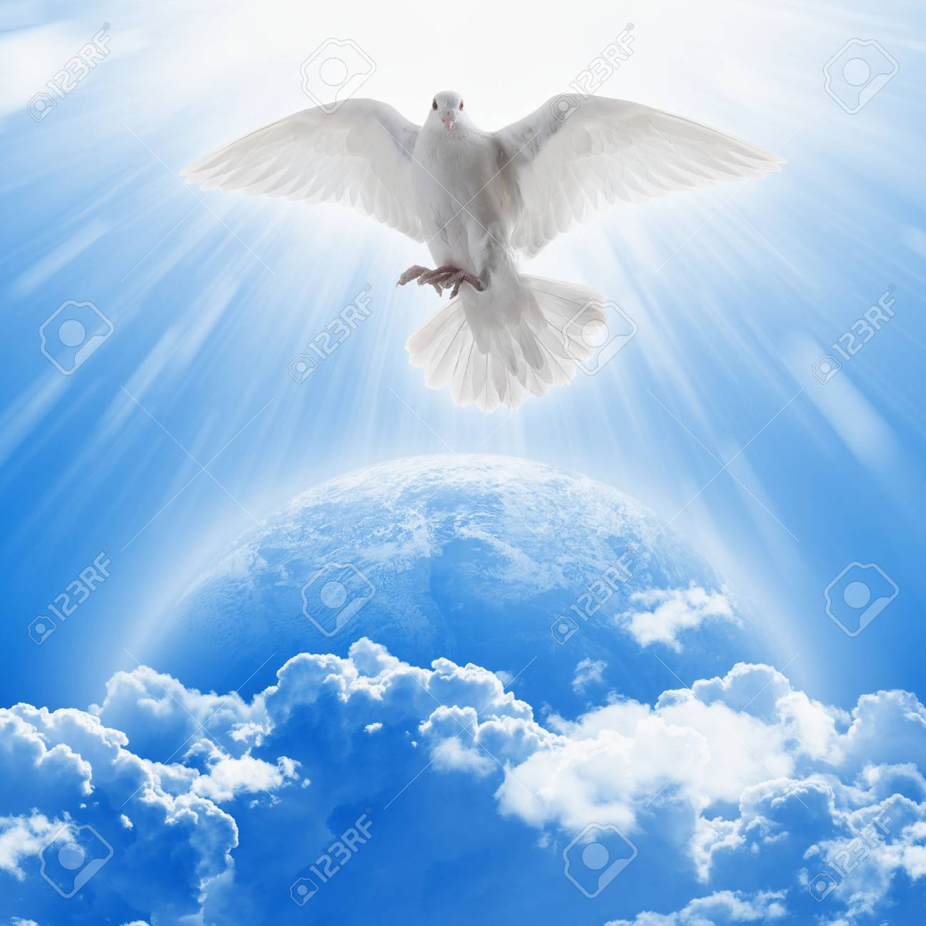 White dove symbol of love and peace flies above planet Earth. - 74949381