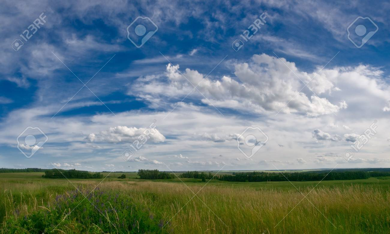 summer landscape with meadows and blue sky with clouds Stock Photo - 3311224