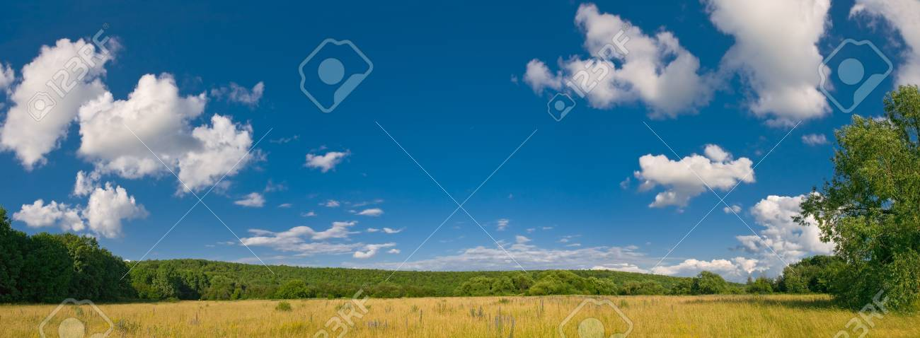 summer landscape with meadows and blue sky with clouds Stock Photo - 3311226