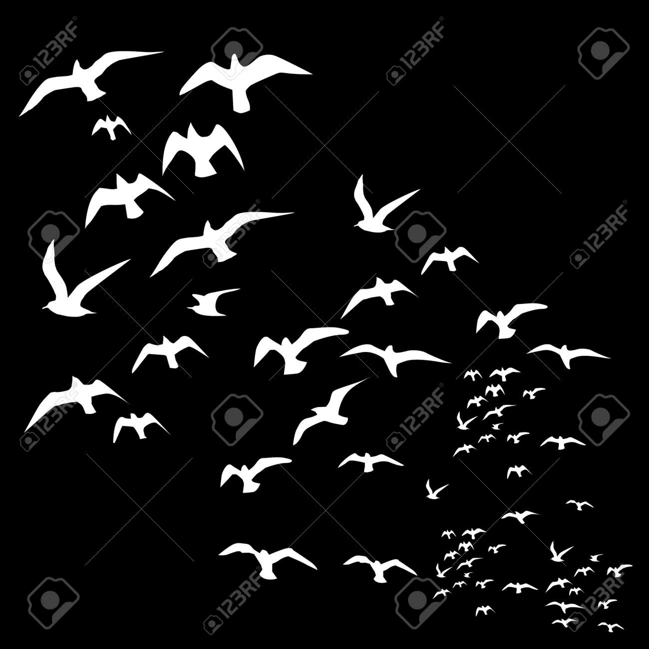 Set of sketches of flying swallows stock vector illustration - Black Background Birds Life Vector Art Stock Vector 22751366