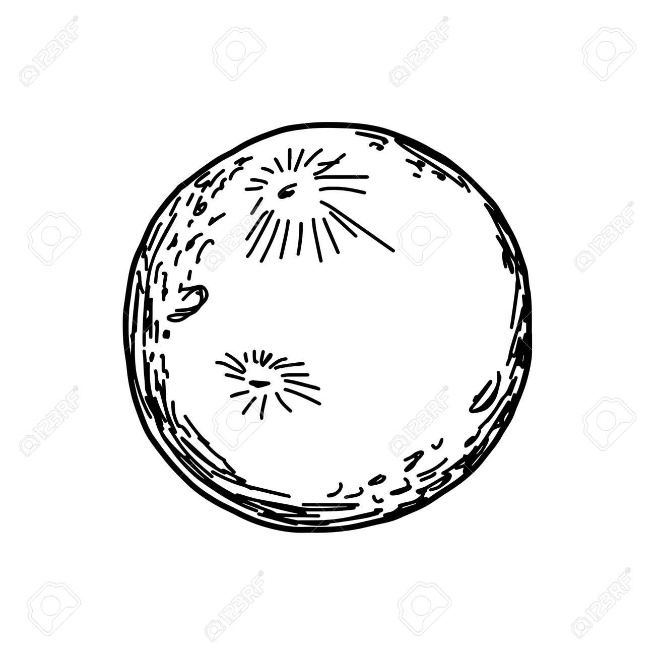 Ilustracion Vectorial Dibujo A Mano Dibujado De La Luna Aislada En