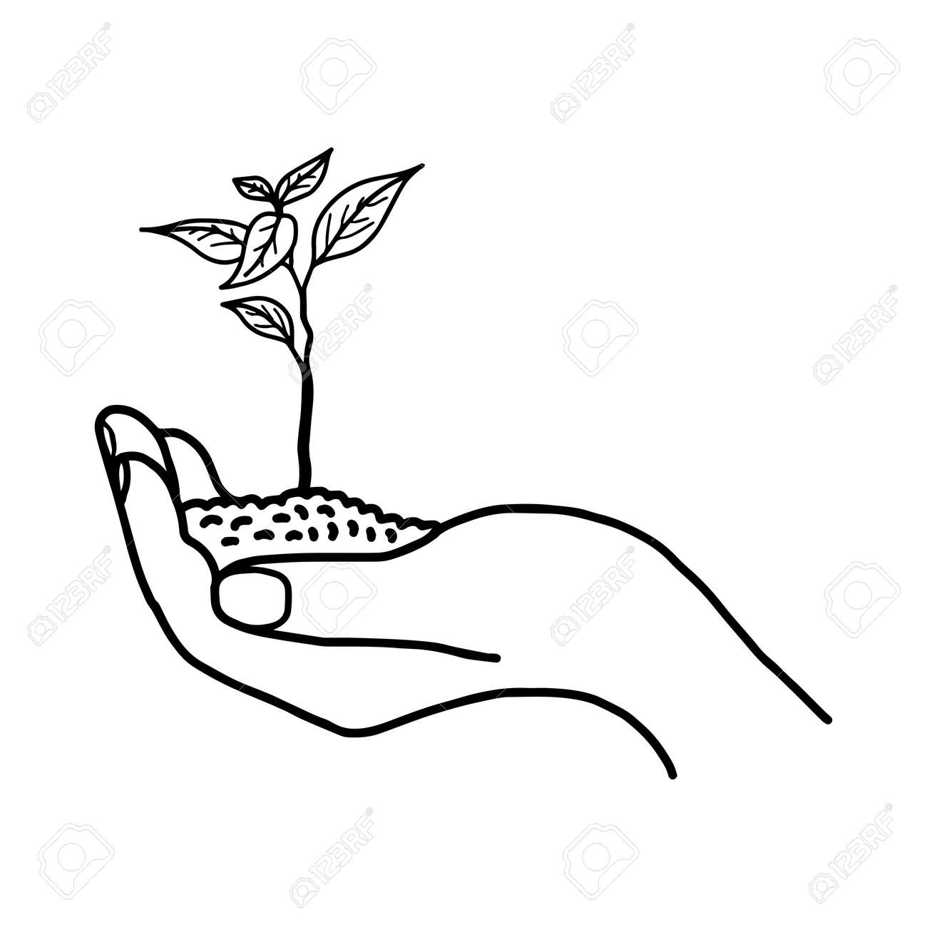 Clipart plant growing