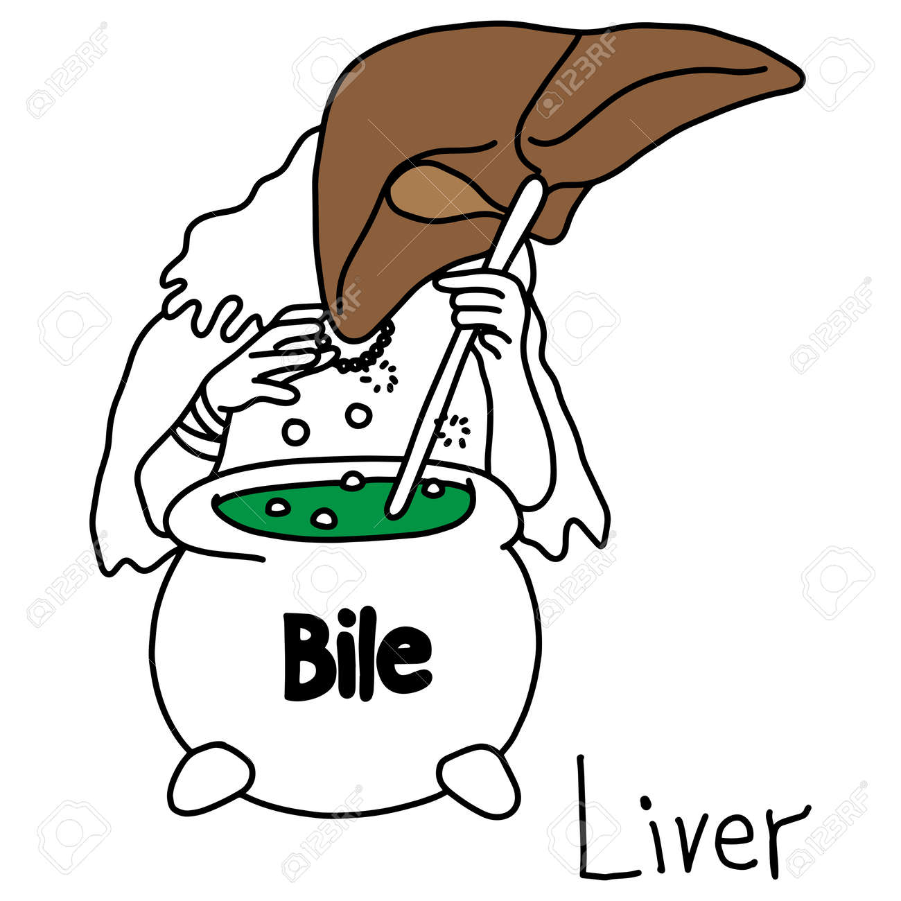 Metaphor Function Of A Liver To Produce Bile Vector Illustration