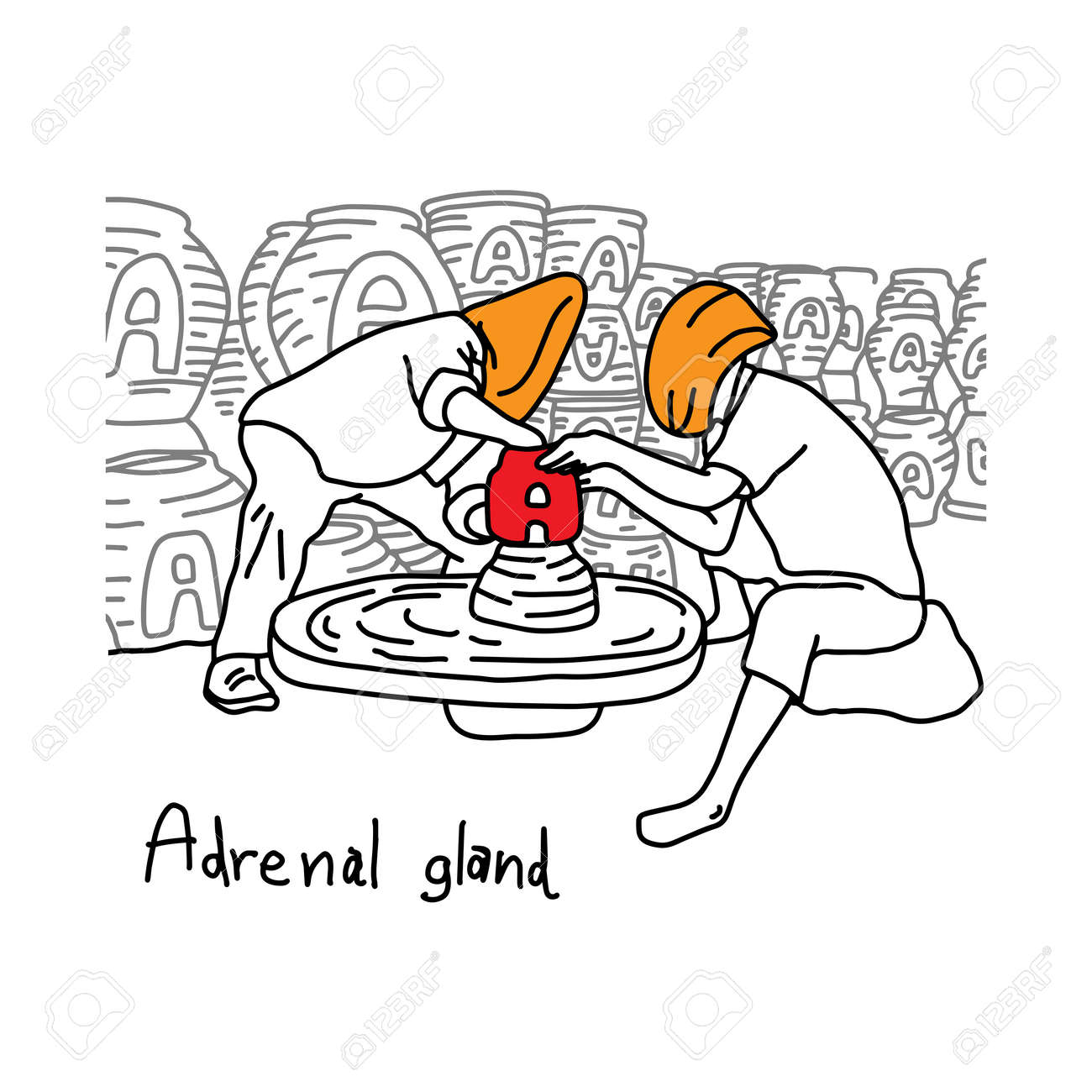 Metaphor Function Of Adrenal Gland Is To Produce Adrenaline