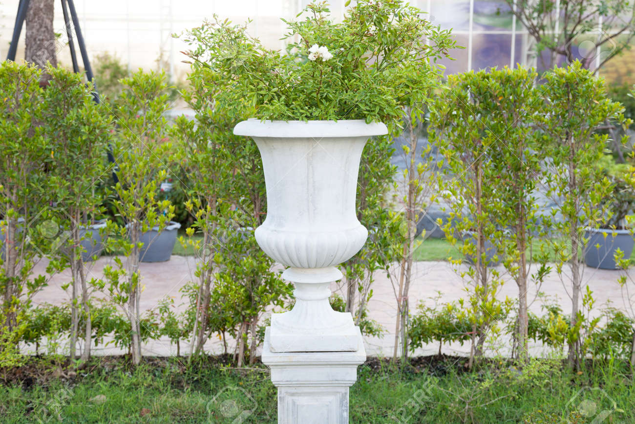 White Jardiniere Gardening In Pots And Decorations In The Garden ...