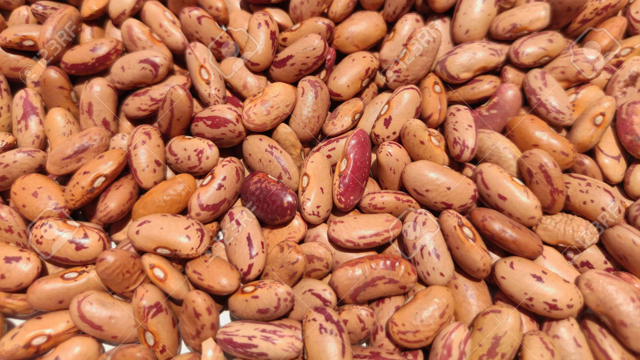 Red Kidney Beans Raajma In Hindi On Full Background Stock Photo Picture And Royalty Free Image Image 149551177