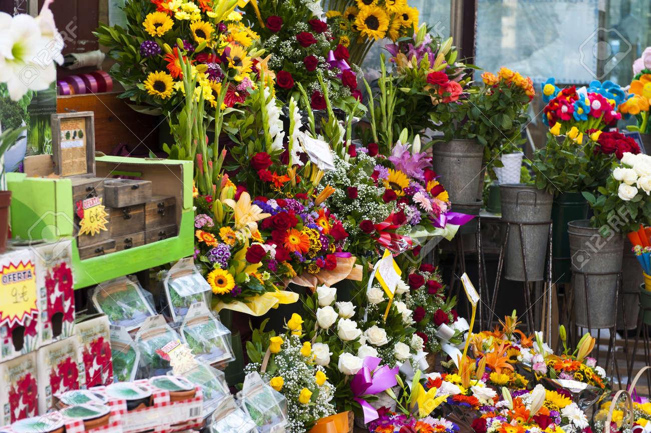 """Résultat de recherche d'images pour """"pots de fleurs"""""""
